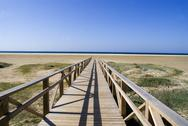 Stock Photo of walkway to the beach