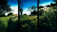Three Vertical Nature Panes of Countryside Stock Footage