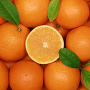 group of oranges with leaves - stock photo