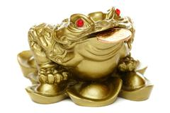 Feng shui frog sitting on money. Stock Photos