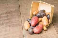 Colorful potatoes in basket Stock Photos