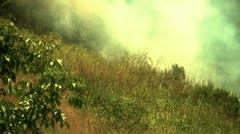 Brushfire burns up hillside Stock Footage