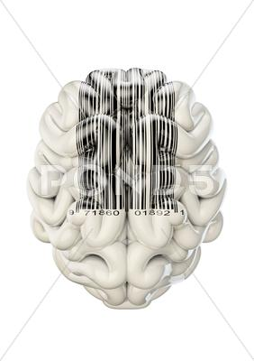 Stock Illustration of Barcode brain