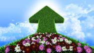 Arrow from grass way, with flowers and sky, ecologic symbol Stock Illustration
