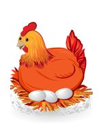 Nice red hen sitting on eggs Stock Illustration