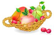 Basket with fruits collection Stock Illustration