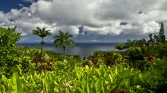 Garden Of Eden, Timelapse, Maui, Hawaii, USA - stock footage