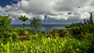 Stock Video Footage of Garden Of Eden, Timelapse, Maui, Hawaii, USA
