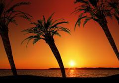Vacation tropical sunset Stock Photos