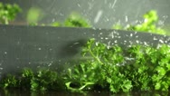 Stock Video Footage of Parsley with knife on wooden cutting board. Macro with shallow dof.