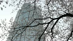 TOKYO - CIRCA MARCH 2013: Mori Tower in Roppongi during cherry blossom season ci - stock footage