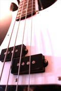 Precision bass close up - stock photo
