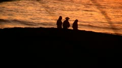 Three People Live For Walks On The Beach Stock Footage