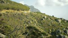 Rocky landscape - stock footage