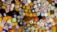 Kaleidoscope of flowers Stock Footage