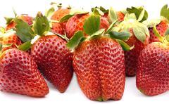 Strawberries group Stock Photos