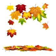 colorful autumn leaves falling down - stock photo