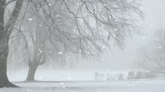 Winter snow storm - stock footage