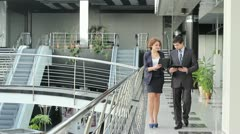 Business partners (PAL) Stock Footage