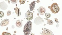 Shells falling down (ends on green) Stock Footage
