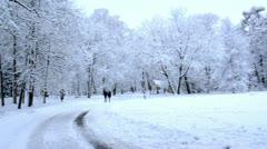 Panorama scene people walk trees dense snow layer winter park Stock Footage