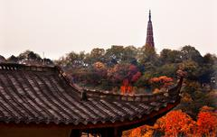ancient tiled roof baochu pagoda west lake hangzhou zhejiang china - stock photo