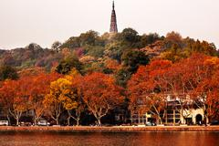 ancient baochu pagoda west lake hangzhou zhejiang china - stock photo