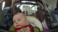 Polar bear behind the stroller. Stock Footage