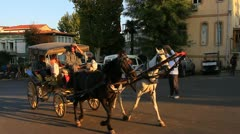 Horse-drawn carriage Stock Footage
