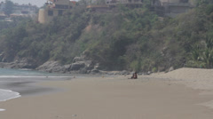 Girl and Dog on Beach Stock Footage