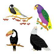 Illustration of the varied birds Stock Illustration