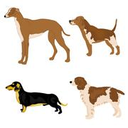 Dogs of the varied sorts Stock Illustration