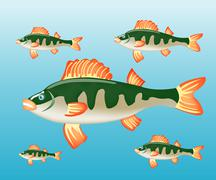 Stock Illustration of fish perch in water