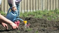 Family Planting Flowers on Smallholder Farm Stock Footage