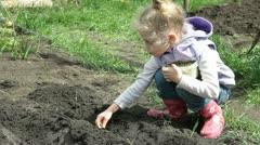 Little Farmer Planting Peas On The Plot Stock Footage