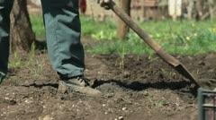 Gardener Planting Potatoes on Smallholder Farm Stock Footage