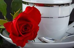 Rose on a coffee cup Stock Photos
