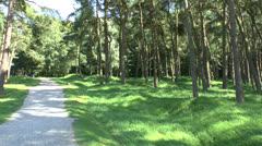 Canadian National Vimy Memorial Park, Vimy, France Stock Footage