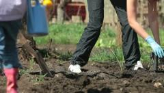 Family Planting Potatoes on Smallholder Farm Stock Footage