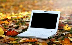 Laptop in an automn scene Stock Photos