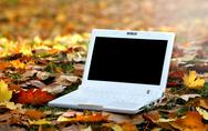 Stock Photo of laptop in an automn scene