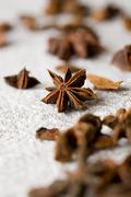 Aromatic star-aniseed Stock Photos