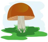 Stock Illustration of mushroom on glade