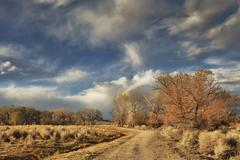 Dirt road in evening Stock Photos