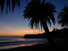 California Palm Sunset Refugio State Beach - stock photo