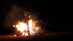 Bonfire burning trees at night,bonfire burning brightly ,big bonfire Stock Footage