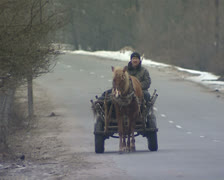 Horse and cart Stock Footage