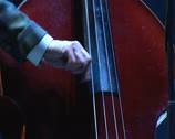 Stock Video Footage of contrabass