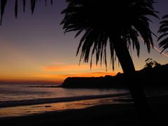 California Palm Sunset Refugio State Beach 2 - stock photo