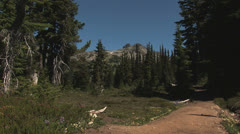 The trail to Black Tusk - stock footage
